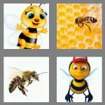 4 pics 1 word 3 letters bee