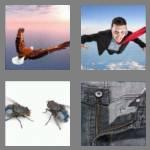 4 pics 1 word 3 letters fly