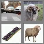 4 pics 1 word 3 letters ram