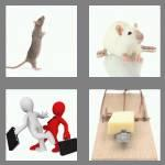 4 pics 1 word 3 letters rat