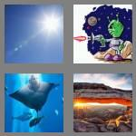 4 pics 1 word 3 letters ray
