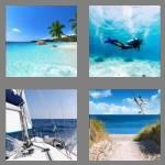 4 pics 1 word 3 letters sea