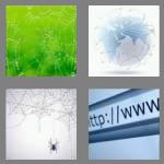 4 pics 1 word 3 letters web