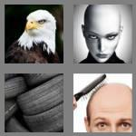 4 pics 1 word 4 letters bald