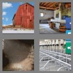 4 pics 1 word 4 letters barn