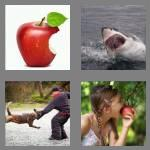 4 pics 1 word 4 letters bite