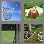 4 pics 1 word 4 letters cage