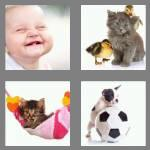 4 pics 1 word 4 letters cute