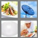 4 pics 1 word 4 letters dish