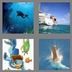 4 pics 1 word 4 letters dive