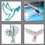 4 pics 1 word 4 letters dove