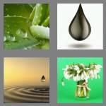 4 pics 1 word 4 letters drop