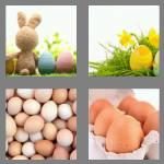 4 pics 1 word 4 letters eggs