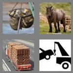 4 pics 1 word 4 letters haul