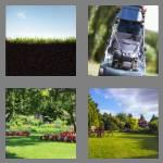 4 pics 1 word 4 letters lawn