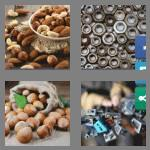 4 pics 1 word 4 letters nuts