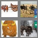 4 pics 1 word 4 letters oxen