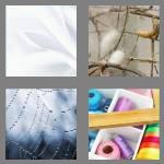 4 pics 1 word 4 letters silk