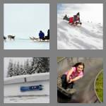 4 pics 1 word 4 letters sled