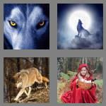 4 pics 1 word 4 letters wolf