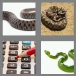 4 pics 1 word 5 letters adder