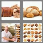 4 pics 1 word 5 letters bread