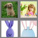 4 pics 1 word 5 letters bunny