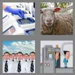 4 pics 1 word 5 letters clone