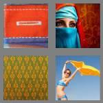 4 pics 1 word 5 letters cloth