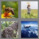 4 pics 1 word 5 letters drone