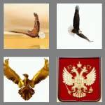 4 pics 1 word 5 letters eagle