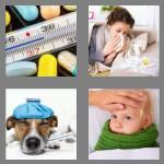 4 pics 1 word 5 letters fever