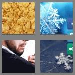 4 pics 1 word 5 letters flake