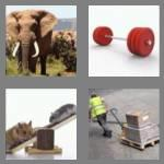 4 pics 1 word 5 letters heavy
