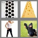 4 pics 1 word 5 letters holey