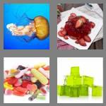 4 pics 1 word 5 letters jelly