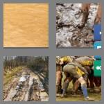 4 pics 1 word 5 letters muddy