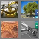 4 pics 1 word 5 letters olive