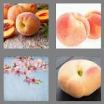 4 pics 1 word 5 letters peach