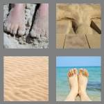 4 pics 1 word 5 letters sandy