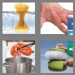4 pics 1 word 5 letters scald