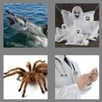 4 pics 1 word 5 letters scary