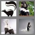 4 pics 1 word 5 letters skunk