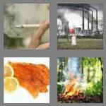 4 pics 1 word 5 letters smoke