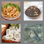 4 pics 1 word 5 letters squid