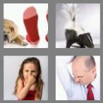 4 pics 1 word 5 letters stink