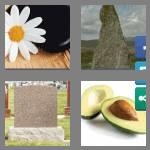 4 pics 1 word 5 letters stone
