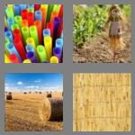 4 pics 1 word 5 letters straw