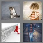 4 pics 1 word 5 letters stray