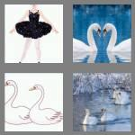 4 pics 1 word 5 letters swans
